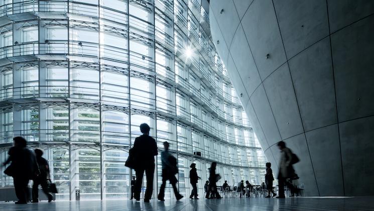 SAP glass wall